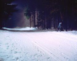 Schneeläufer <br> 2005